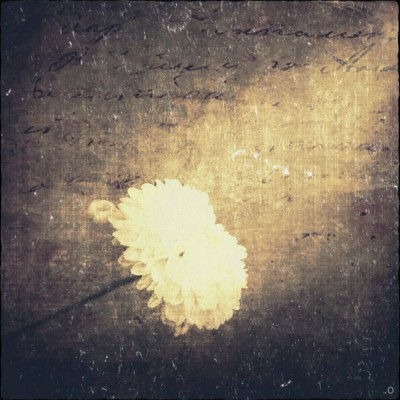 iPhoneography - Searching for Light