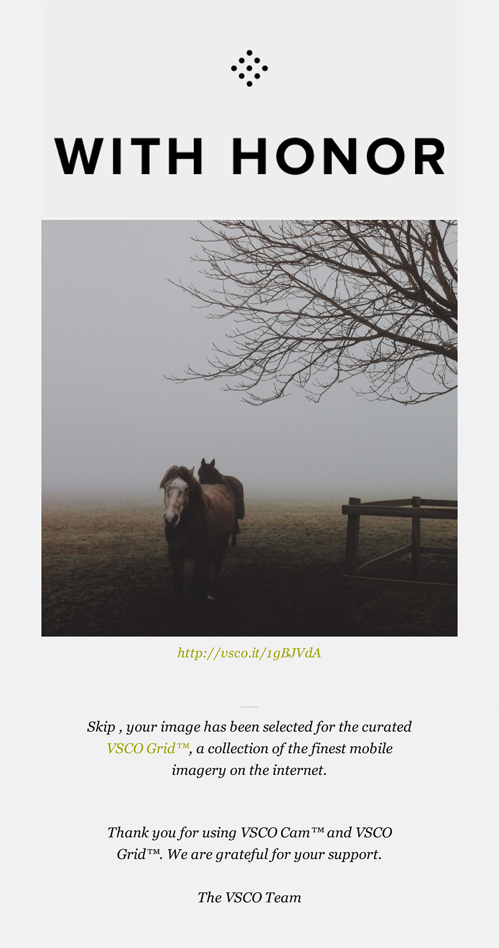 iphone photography - curated vsco grid (dancing horses)