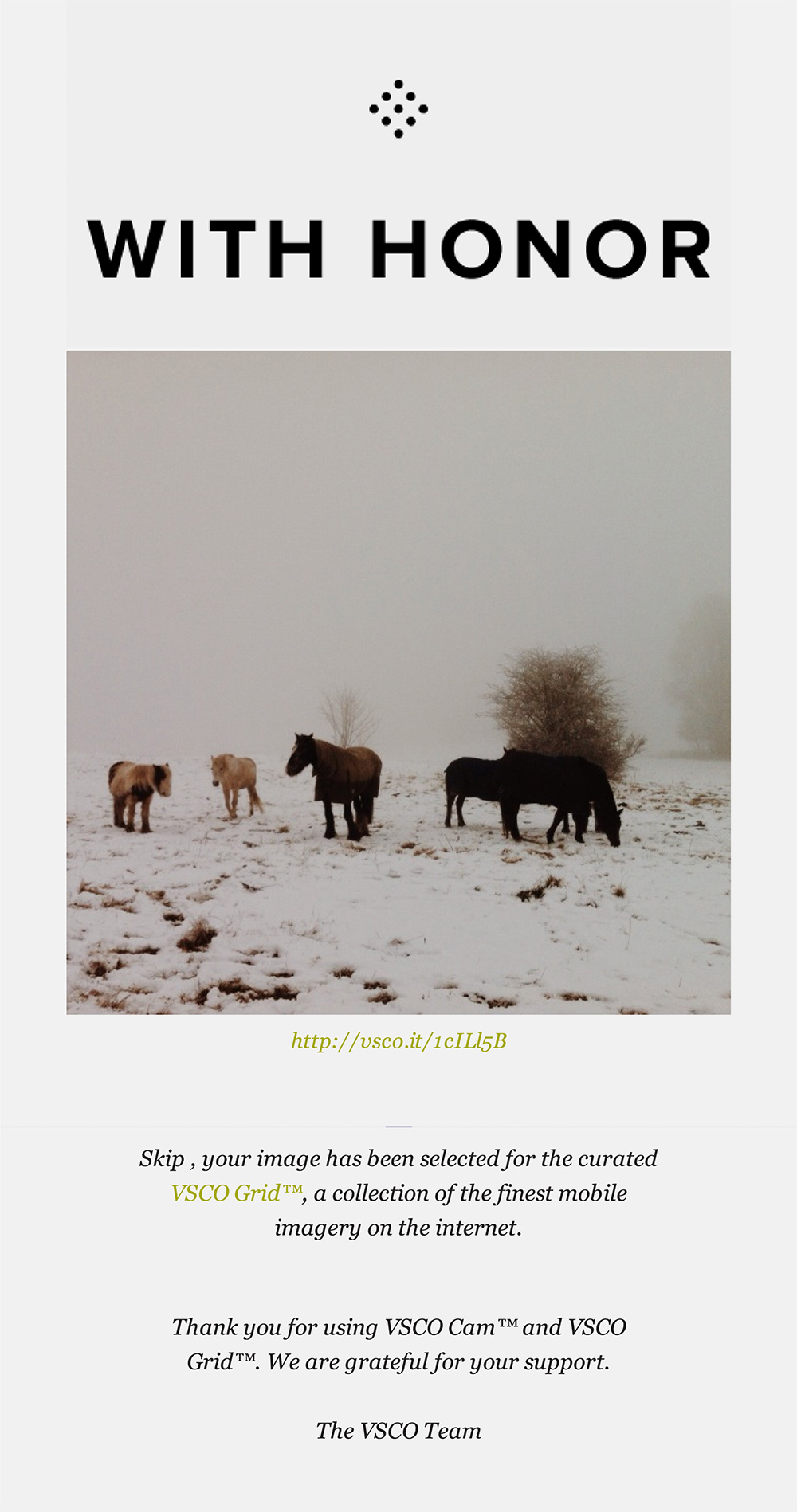 iphone photography - curated vsco grid (winter horses)
