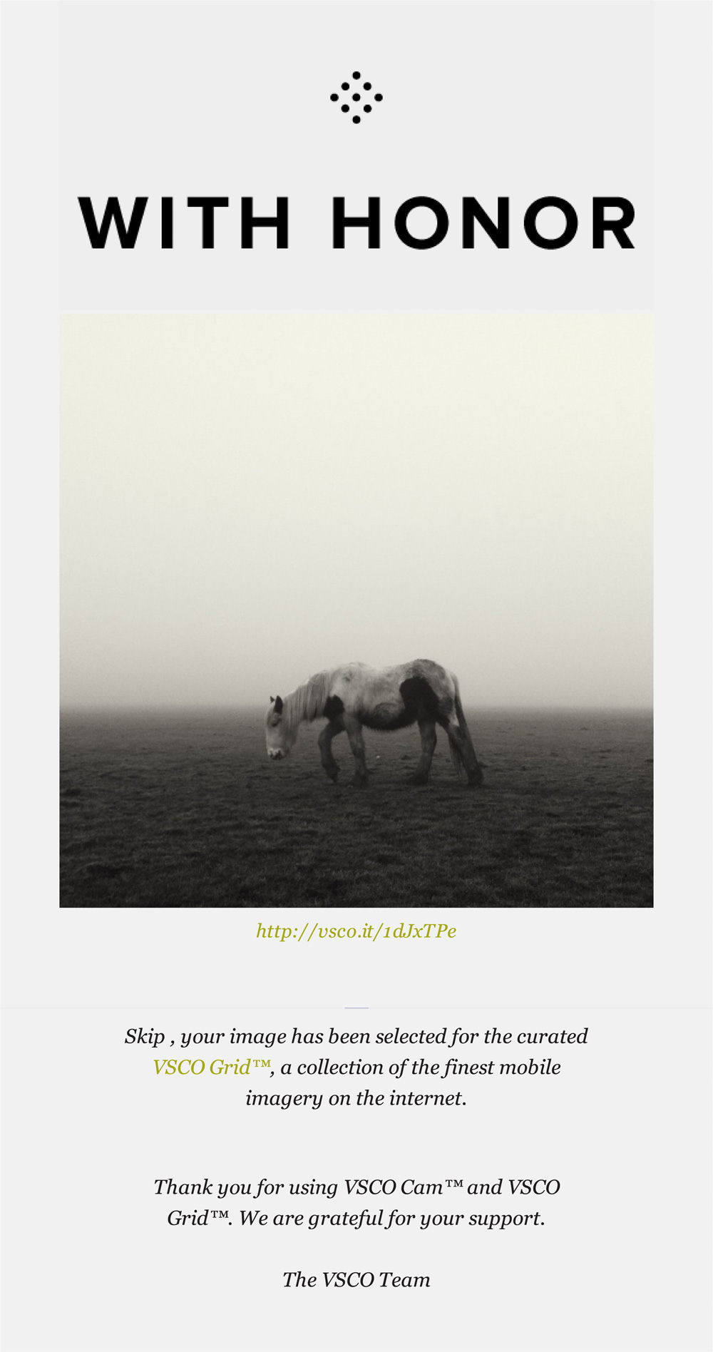 horse on lincoln west common - curated VSCO grid