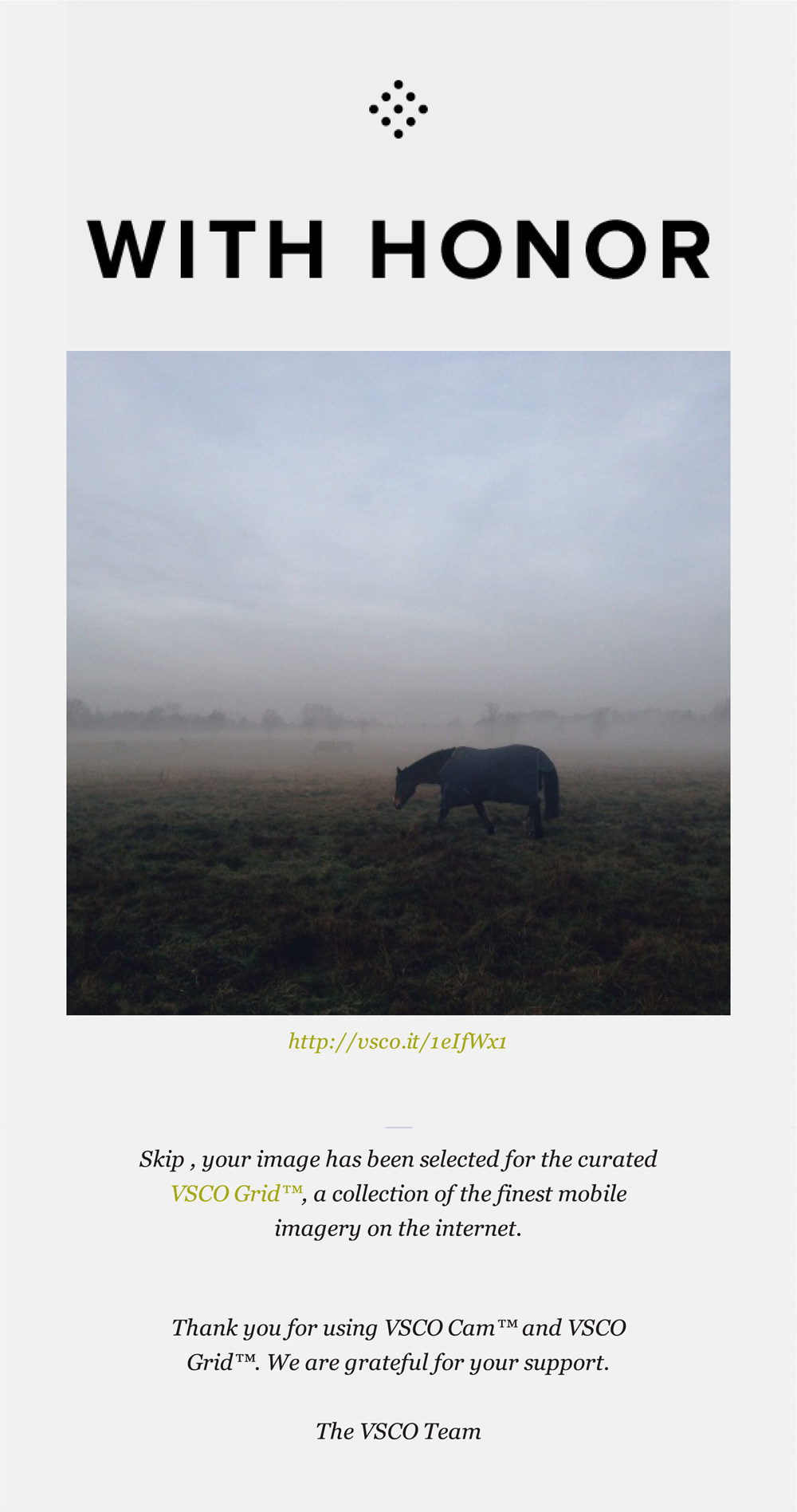 looking for fog - curated VSCO grid