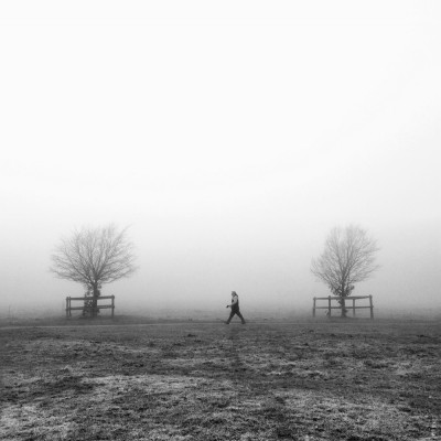 strolling in the fog on lincoln west common