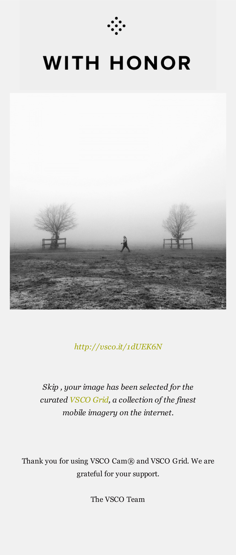 vsco grid - strolling in the fog on lincoln west common